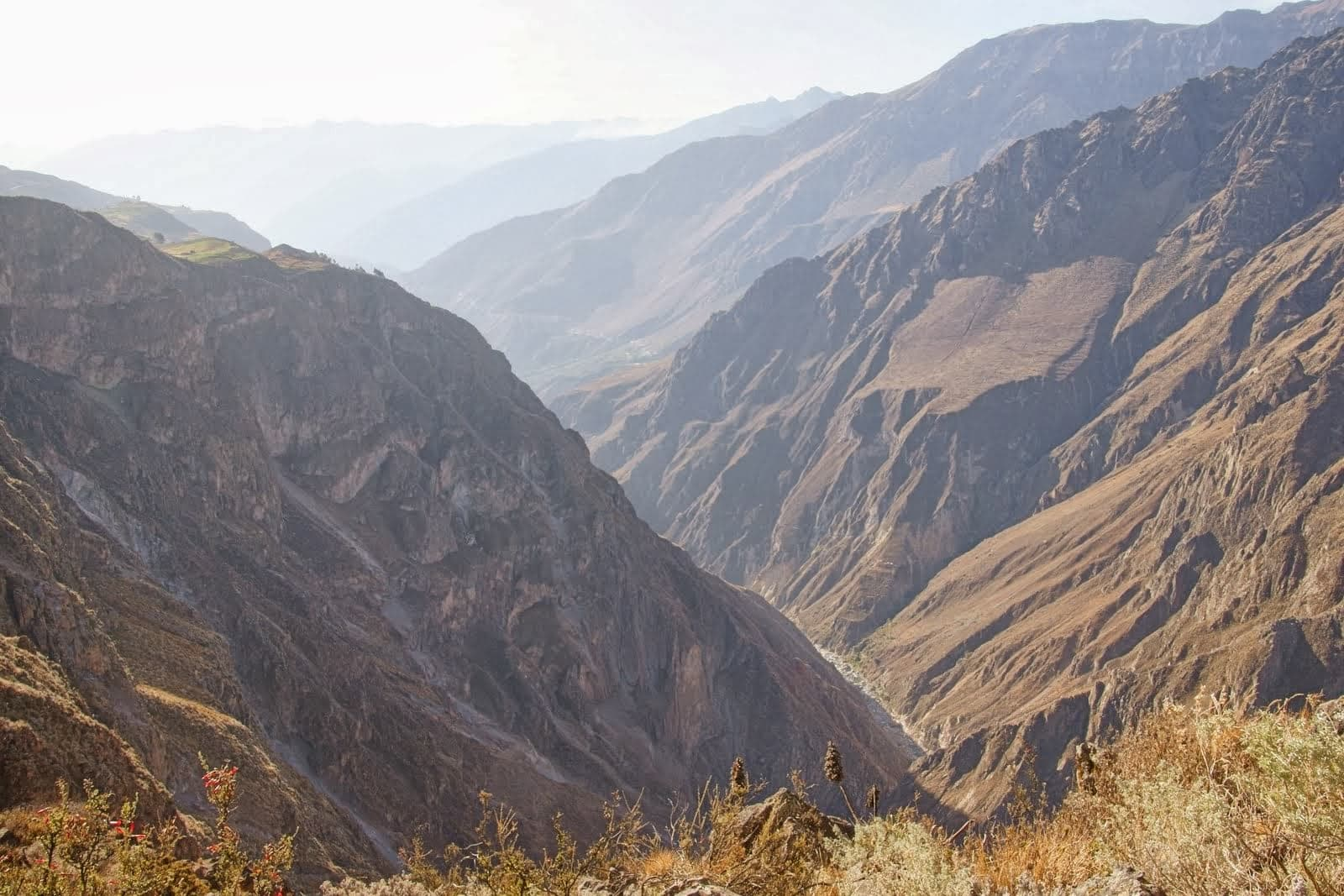 Trek in Colca Canyon - South of Peru