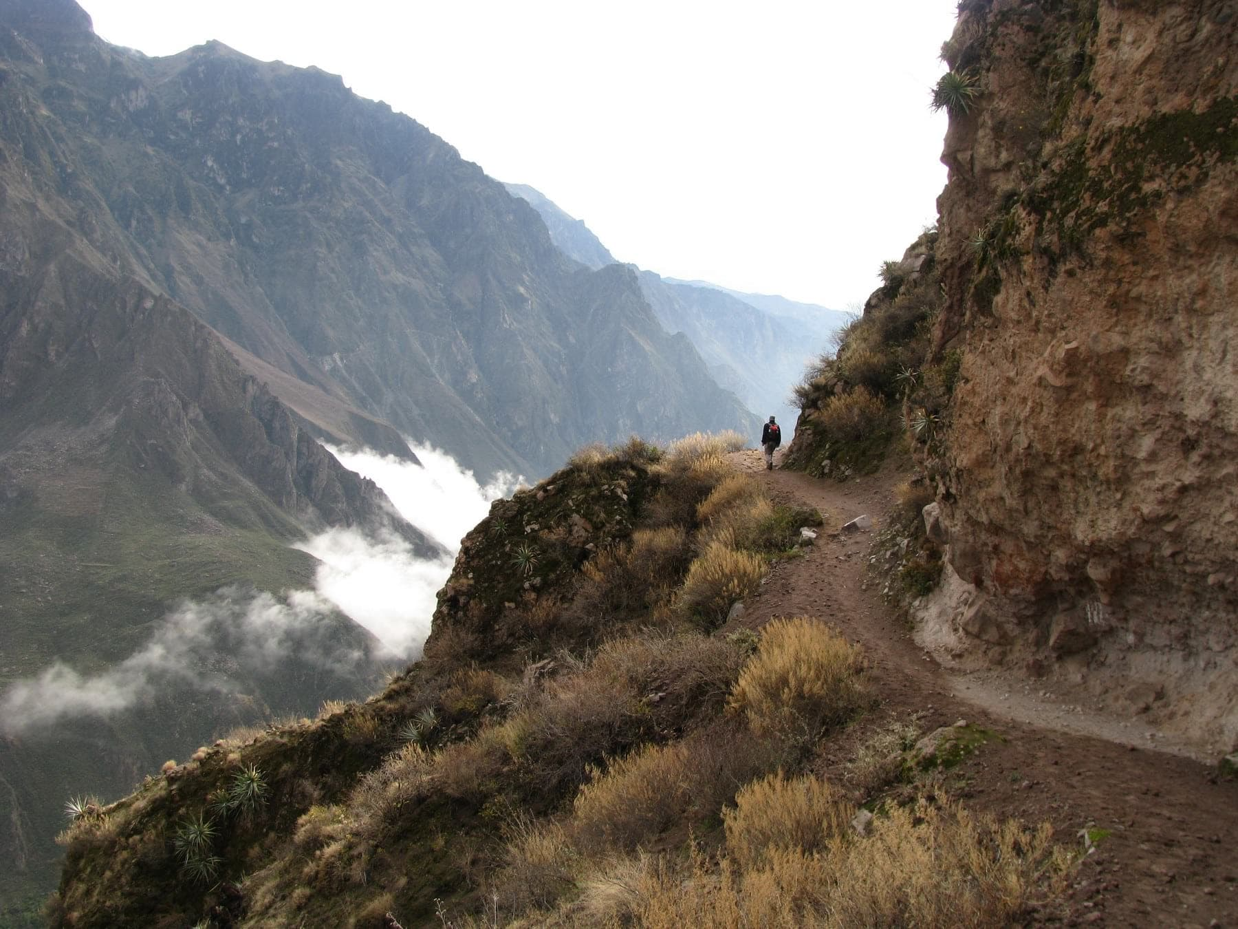 Trek in the Colca Canyon